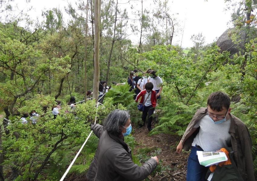 Literacia para a Floresta em Vila Nova de Famalicão